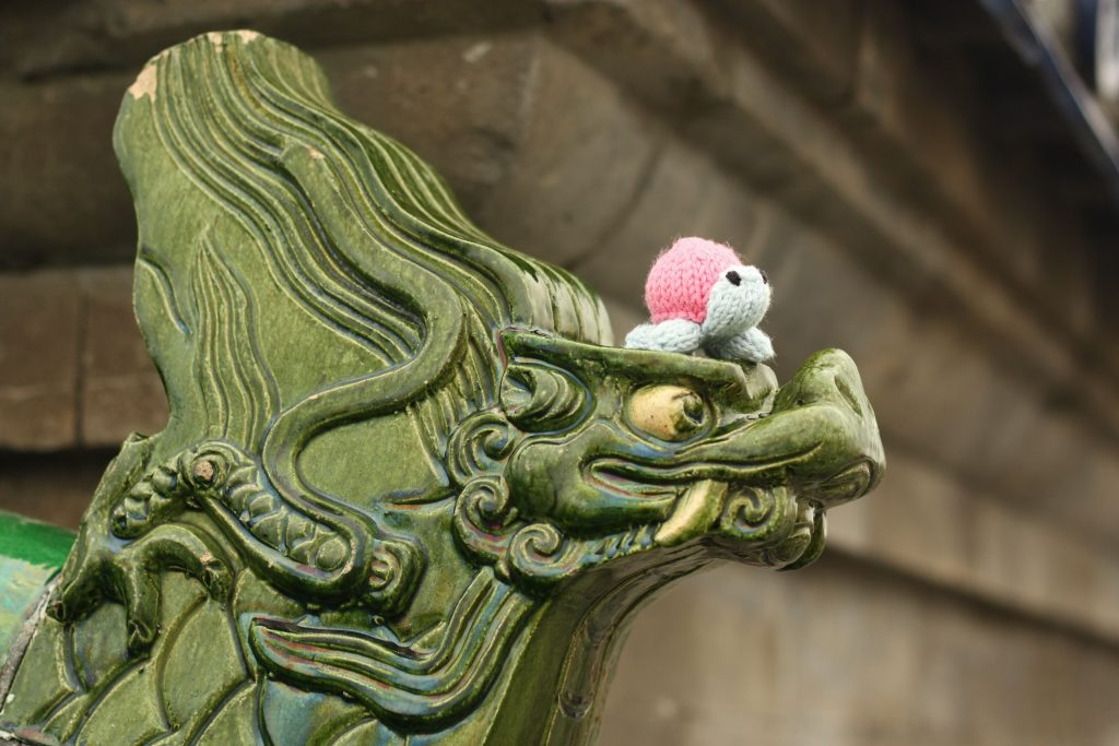 Turtle's Travels in China by Mrsmumpitz