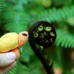 knit toy turtle pattern