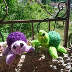 Mini turtle knitting pattern